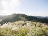 5 địa điểm với khung cảnh mùa thu không khác gì trong phim ở Đài Loan