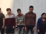 Thanh Hóa: Tóm gọn ổ nhóm trộm chó liên huyện do 'nữ quái' cầm đầu