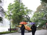 Dự báo thời tiết ngày 19/11: Bắc Bộ trở rét, Trung Bộ mưa to