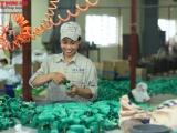 Công ty CP Cúc Phương (CPC): Hành trình 20 năm mang thương hiệu ống nhựa Dismy đến với người Việt