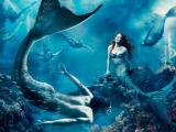 Những lý do khán giả khó lòng bỏ lỡ Người Cá Báo Thù - món ăn ấn tượng trên bàn tiệc điện ảnh cuối tháng 11 này