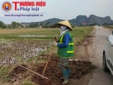 Vụ thuê người dân bốc đất ruộng đắp tỉnh lộ: Phản hồi của Sở GTVT Thanh Hóa