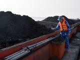 Hải Phòng: Tạm giữ 500 tấn than không rõ nguồn gốc