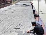 Quảng Ninh: Bắt giữ 450 tấn than xít không rõ nguồn gốc