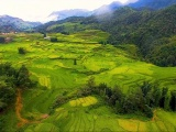 Phát triển du lịch - nhân tố quan trọng giảm áp lực với rừng