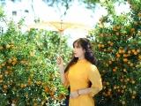 Kon Tum: Hoa Tết rộn ràng xuống phố