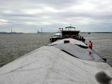 Hải Phòng: Tạm giữ 700m3 than không rõ nguồn gốc