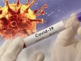 Mỹ bắt đầu thử nghiệm vaccine chống virus corona từ hôm nay