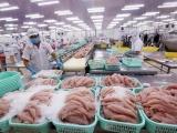 Xuất khẩu cá tra sang Trung Quốc có thể phục hồi vào tháng sau