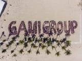 Tập đoàn Gami ký thỏa thuận hợp tác chiến lược