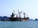 Vận tải biển Việt Nam tìm đường phục hồi sau dịch COVID-19