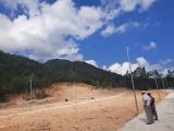 Khánh Hoà: San ủi đất rừng sản xuất, vẽ quy hoạch, phân lô bán nền trái quy định