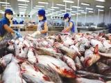 Dự báo xuất khẩu thủy sản hồi phục với tốc độ thấp