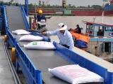 Giá gạo xuất khẩu của Việt Nam vẫn lạc quan dù gặp khó khăn do dịch bệnh