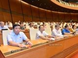Quốc hội thông qua Luật Doanh nghiệp, Luật Phòng, chống thiên tai và Luật Đê điều