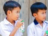 Quảng Nam: Nỗ lực để đưa sữa lên các trường học ở vùng cao