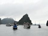 Quảng Ninh: Đình chỉ tàu du lịch vi phạm trên vịnh Hạ Long