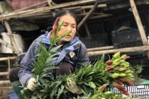 Hà Nội: Hoa tươi Tây Tựu giảm giá sâu giữa đại dịch Covid-19