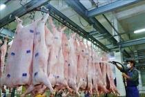 Giá thịt lợn tăng 'sốc', Bộ Công Thương khuyên dùng thịt đông lạnh