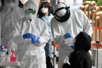 Thêm 4 ca mới, Việt Nam ghi nhận 245 người mắc Covid-19