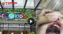 Vụ cô giáo đánh trẻ tại trường mầm non Ecokids: Phụ huynh học sinh nói gì?