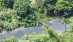 Cẩm Phả, Quảng Ninh: Thu giữ 40 tấn than không rõ nguồn gốc