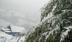 Dự báo thời tiết ngày 17/2: Bắc Bộ rét đậm, vùng núi có băng giá