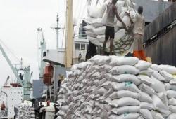 Doanh nghiệp phân phối gạo lớn nhất Australia mở nhà máy tại Việt Nam