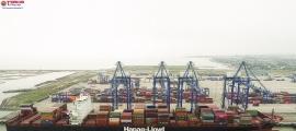 Cảng biển Việt Nam cần được quy hoạch một hệ thống giao thông tương xứng