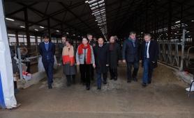 Chủ tịch Quốc hội ấn tượng trước trang trại bò sữa TH ở Nga