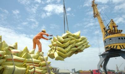 Có thêm gần 50 thương nhân đủ điều kiện xuất khẩu gạo