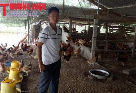 Nghệ An: Vươn lên từ mô hình nuôi gà liên kết