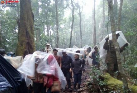 """Gian nan """"cuộc chiến' giữ rừng ở Kon Tum"""