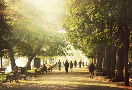 Dự báo thời tiết ngày 20/11: Bắc Bộ và Bắc Trung Bộ đêm rét, ngày hửng nắng