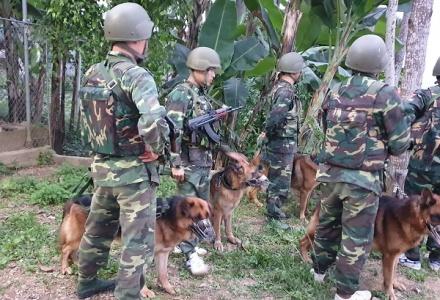 Hà Tĩnh: Đánh án vùng biên giới, thu giữ gần 300kg ma túy
