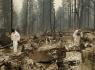 Mỹ: Cháy rừng thảm khốc nhất lịch sử California, 48 người thiệt mạng