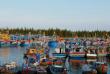 7 trải nghiệm độc đáo khi du lịch Hồ Tràm