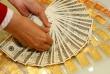 Giá vàng và ngoại tệ ngày 14/6: Vàng và USD đều tăng
