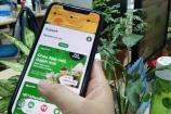 Ứng dụng Gojek chính thức ra mắt tại thị trường Việt Nam