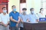 Thanh Hóa: 5 cán bộ 'hô biến' rau ngổ thành hoa ly hầu tòa