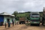 """Kon Tum: Trạm thu mua nông sản nhiều 'không"""" ngang nhiên hoạt động, chính quyền có """"làm ngơ""""?"""