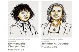 Phương pháp chỉnh sửa gene giành giải Nobel Hóa học 2020
