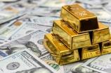 Giá vàng và ngoại tệ ngày 23/1: Vàng và USD biến động trái chiều