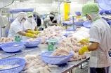 Xuất khẩu hải sản của Việt Nam dần khởi sắc