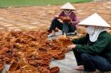 Phú Thọ: Ngôi làng nổi tiếng với nghề truyền thống đan cót và nứa chắp