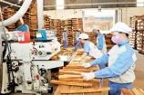 Dịch bệnh khiến 50% doanh nghiệp ngành gỗ đứng trước nguy cơ phá sản