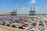 Đề xuất thêm cảng biển được phép nhập khẩu ô tô dưới 16 chỗ