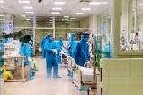 Việt Nam đã chữa khỏi trên 464 nghìn ca mắc COVID-19