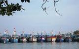 Ứng phó với bão số 9: Phú Yên sẽ cưỡng chế ngư dân nếu không rời bè và tàu cá