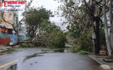 Đà Nẵng: Công tác phòng chống và khắc phục thiên tai sau bão số 9